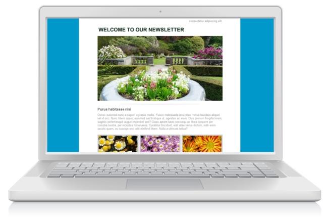 imágenes en newsletters